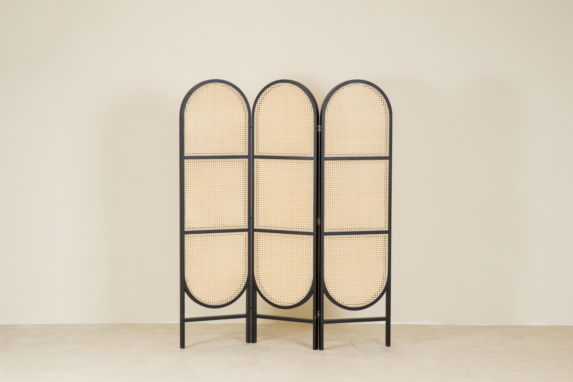 CANE partition, black