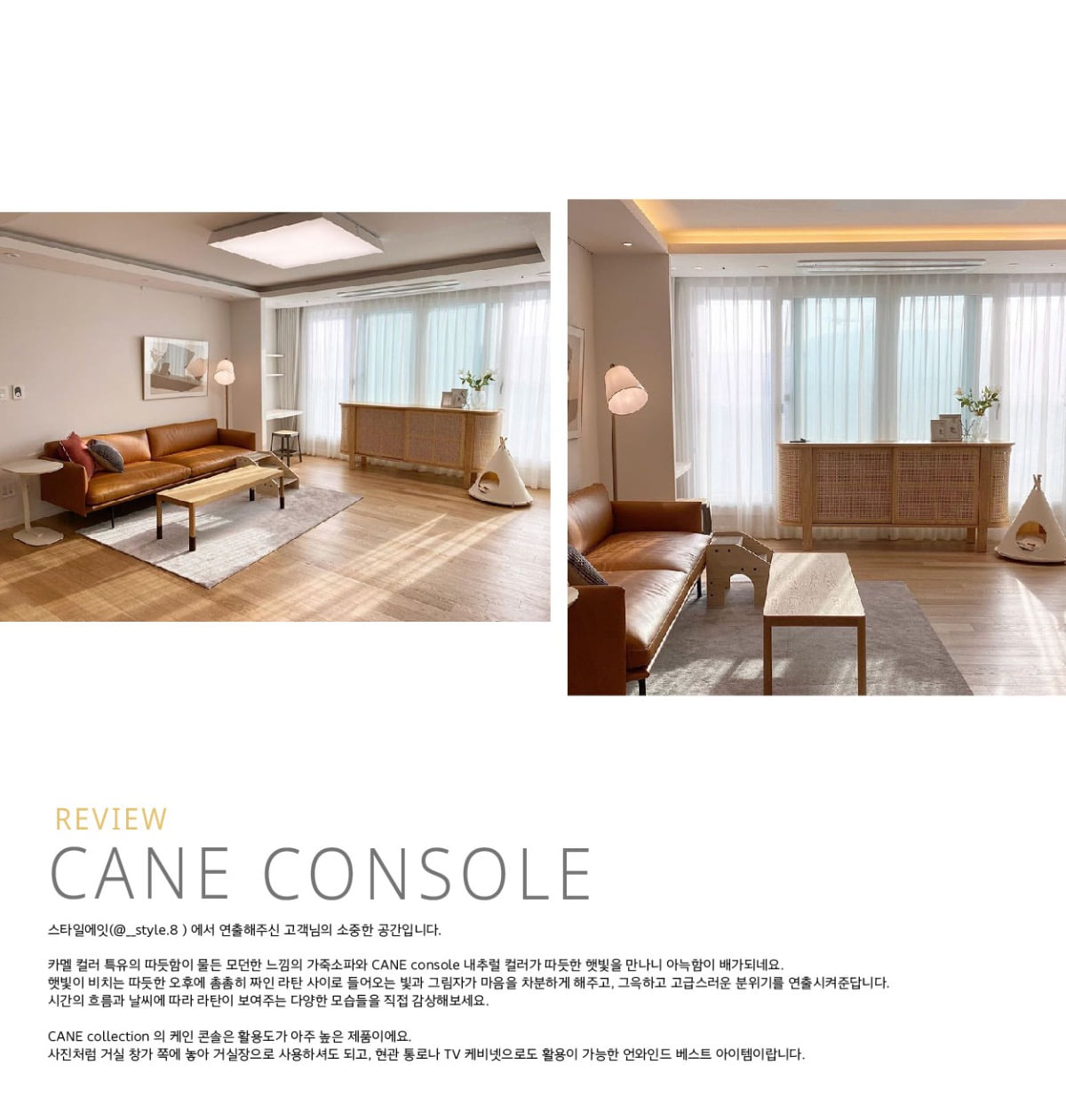 CANE console, natural